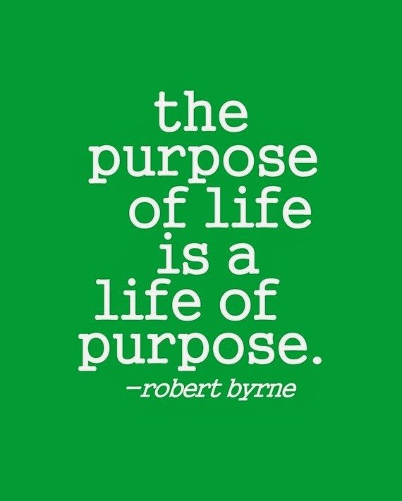The purpose of life is a life of purpose